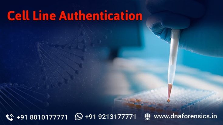 Cell Line Authentication DNA Testing service in India